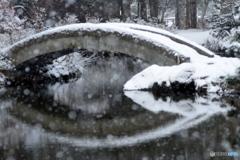 心字池の雪景色