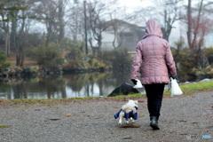 ママとお散歩、楽しいな~