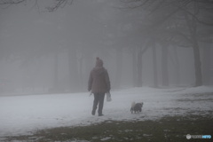 霧の朝 ママとお散歩