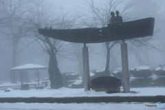 1月24日 霧の朝-2