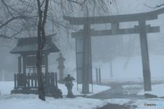 1月24日 霧の朝-1
