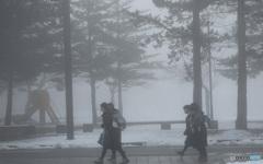 霧の中 おしゃべりしながら通学