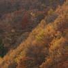 晩秋の大山