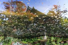 秋の宝福寺