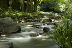 豪渓の流れ