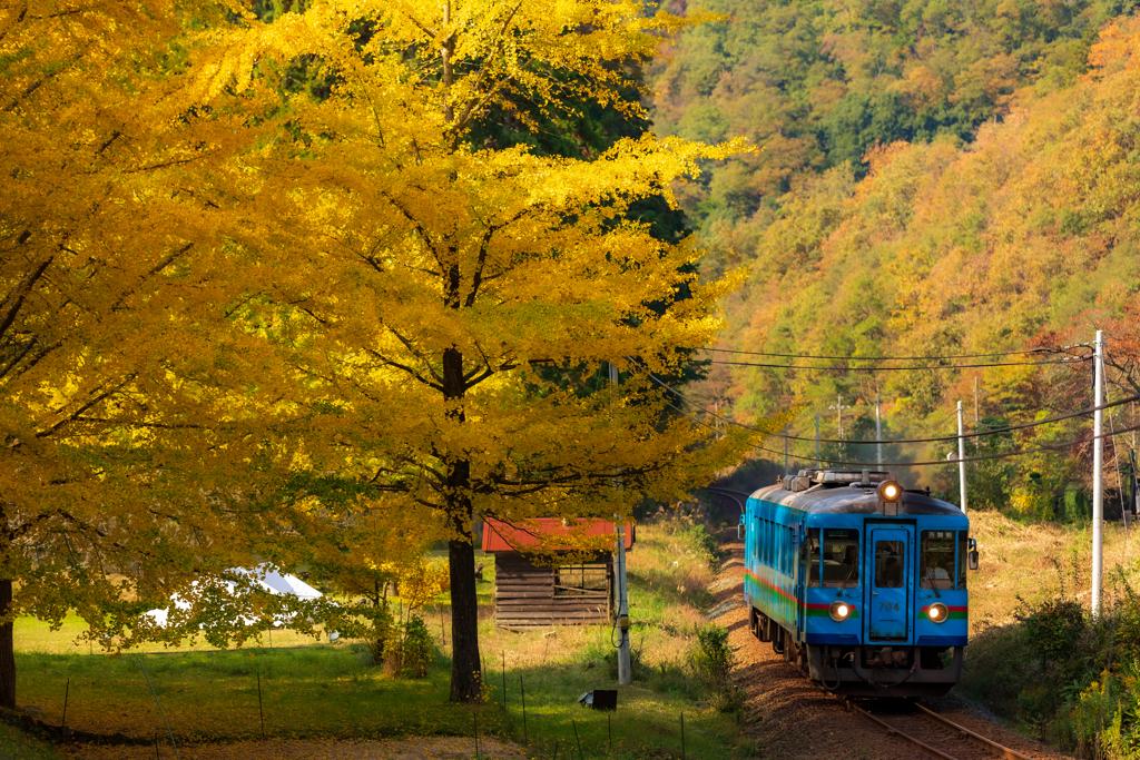 銀杏と単行列車