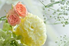 黄色い花、赤い花、赤い花、葉っぱ多数。