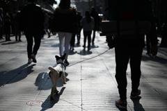city walk #2