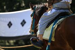 Horses & Archers #6
