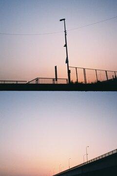 フィルム写真(ハーフカメラ)