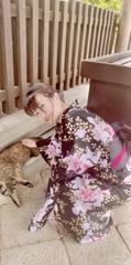 猫と浴衣美人