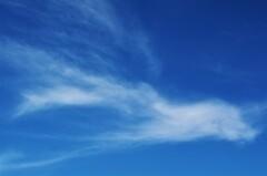 今日の雲シリーズ1「羽ばたく」