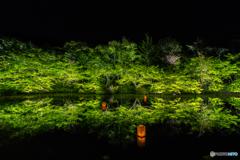 御船山楽園 水鏡