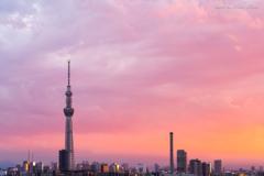 Sunset in Tokyo 2021