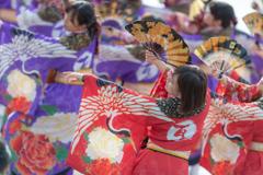 ゑぇじゃないか祭り 1st