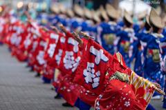 原宿表参道元氣祭 21th
