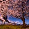 Junction 3rd ~ 桜の季節、もう一度だけ...