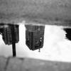 雨上がりの新宿 都庁