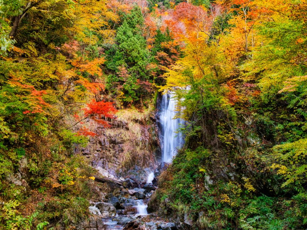 秋の天生中滝