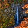 白水の滝の紅葉