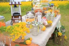 菜の花 Happy wedding  Ⅳ