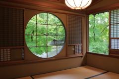 茶室から見える風景