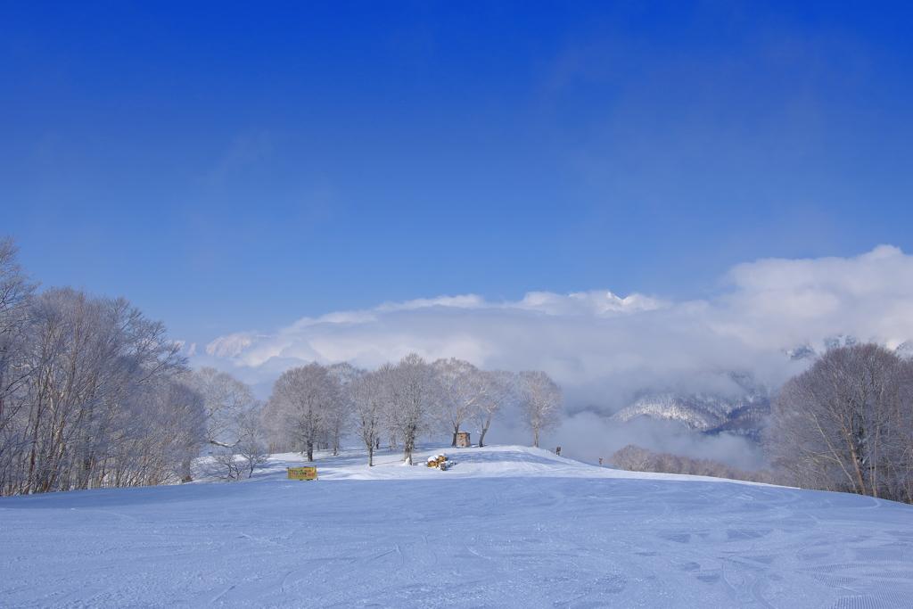 青空のスキー場