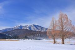 Winter scene 2