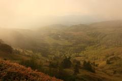 朝霧の間から
