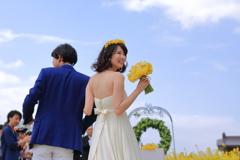 菜の花 Happy wedding  Ⅱ