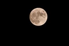 中秋の名月Ⅰ