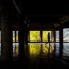 豊国神社 反射する色