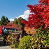 京都 正法寺の秋