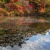 六甲の秋彩