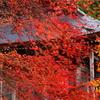 石道寺の秋景