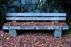 冬のベンチ
