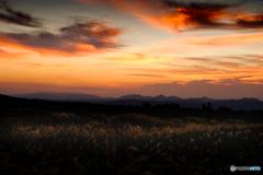 夜明け前の情景