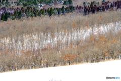 冬のパレット