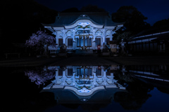 春夜の武雄神社