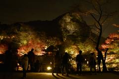 秋のライトアップを楽しむ人々