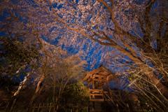山里の春の宵