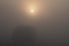 深霧に動けない!