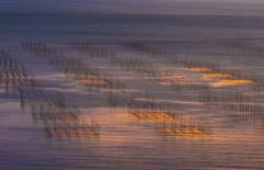 輝く島原湾
