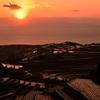 夕日に輝く棚畑の「マルチ」