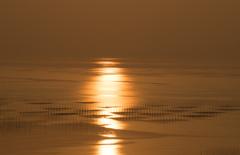 島原湾に現れた光の帯。