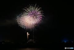 綺麗な花火。。。ゆっくり見てますか?