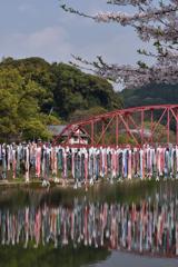 春の川上峡