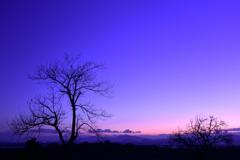 菊池平野の夕景2