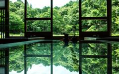新緑の庭園のシンメトリー