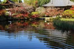 長岳寺の紅葉